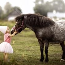 Izjāde ar poniju