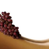 Vīna SPA ķermeņa terapija