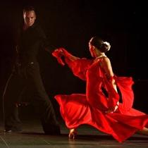 Balles un sporta deju nodarbību abonements
