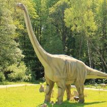Brauciens uz Klaipēdu ar Delfinārija un Dinozauru parka apmeklējumu