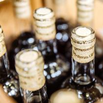 Vīna degustācija - ģimenes apmeklējums